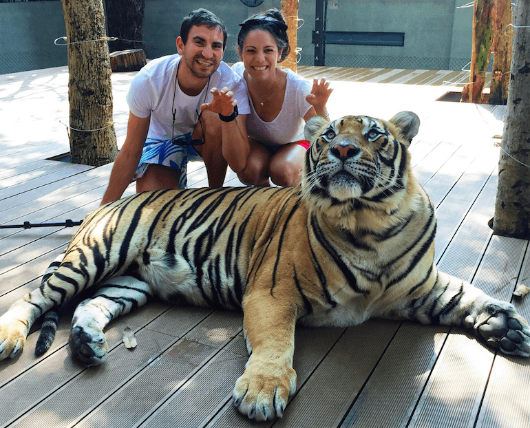 Daniel and lauren with a tiger