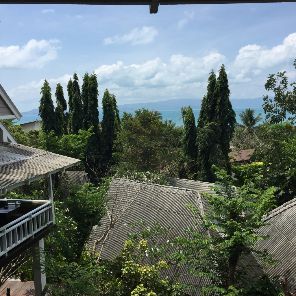 The view from our bungalow at the top of the world's tallest staircase.