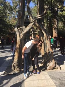 Forbidden City Love Trees