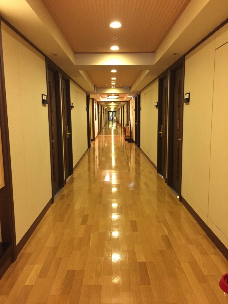 Hakone Tensien Hotel, a traditional onsen ryokan