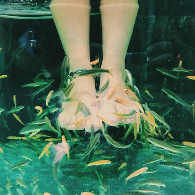 Dr Fish Foot Spa in Ko Samui